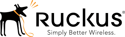 Ruckus Wireles Networks, Wi-Fi, Access Points