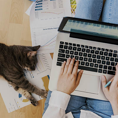 What You Need to Successfully Work from Home